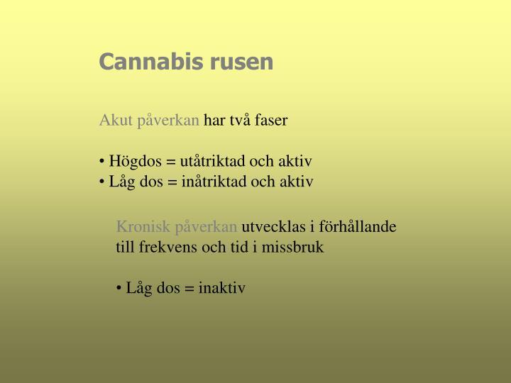 Cannabis rusen