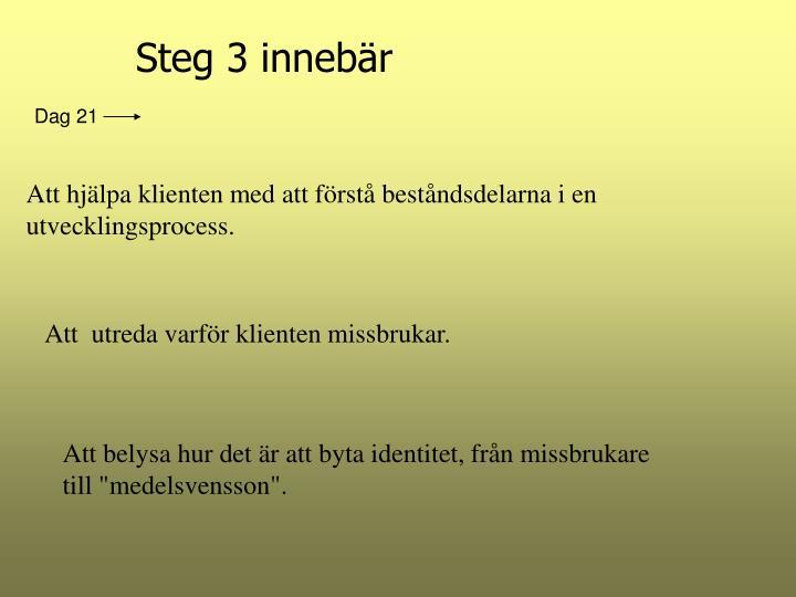 Steg 3 innebär