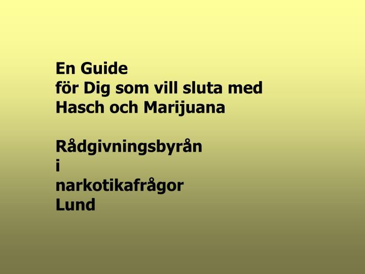 En Guide