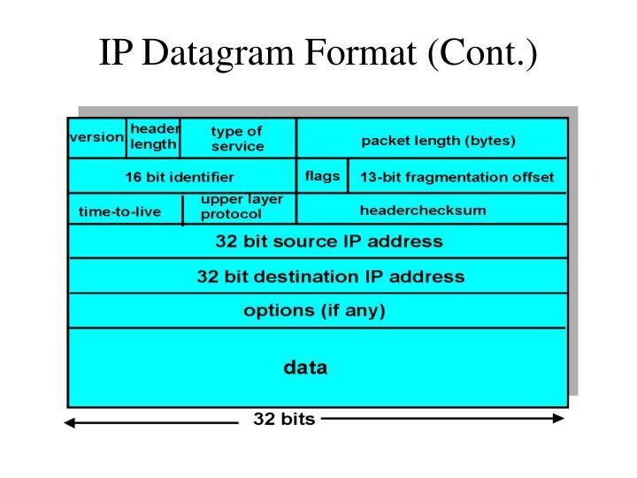 IP Datagram Format (Cont.)