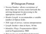 ip datagram format