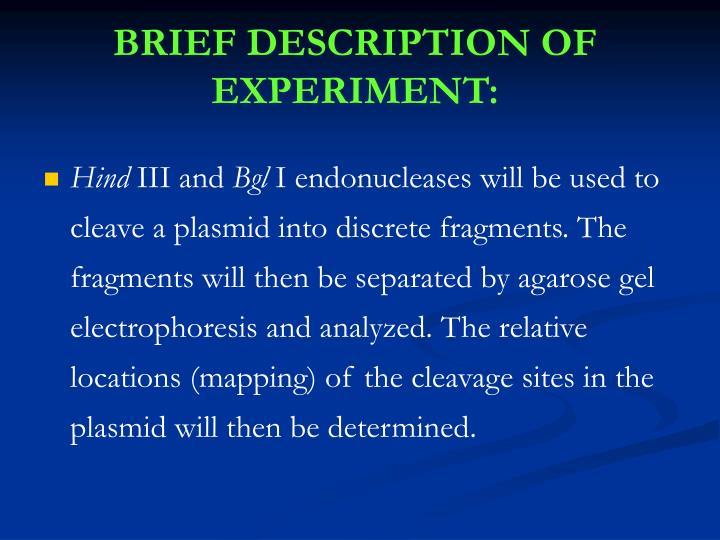 BRIEF DESCRIPTION OF EXPERIMENT: