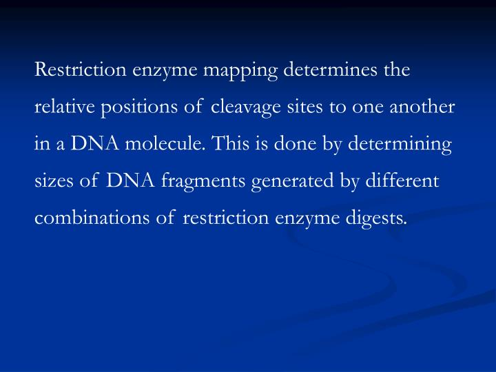 Restriction enzyme mapping determines the relative positions of cleavage sites to one another in a DNA molecule. This is done by determining sizes of DNA fragments generated by different combinations of restriction enzyme digests.