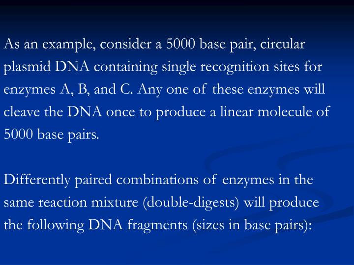 As an example, consider a 5000 base pair, circular plasmid DNA containing single recognition sites for enzymes A, B, and C. Any one of these enzymes will cleave the DNA once to produce a linear molecule of 5000 base pairs.