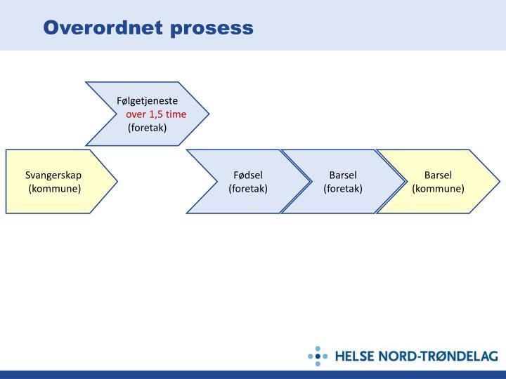 Overordnet prosess