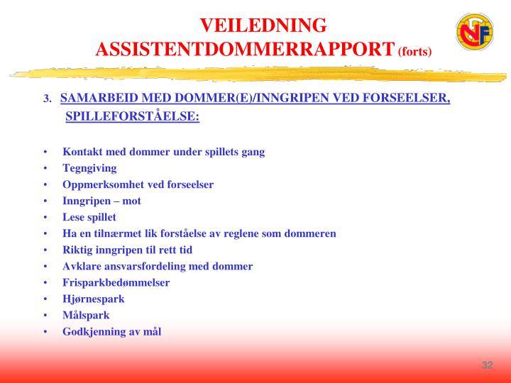 VEILEDNING ASSISTENTDOMMERRAPPORT