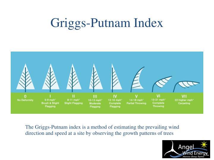 Griggs-Putnam Index
