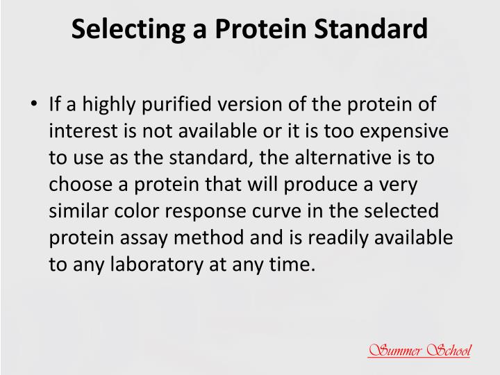 Selecting a Protein Standard