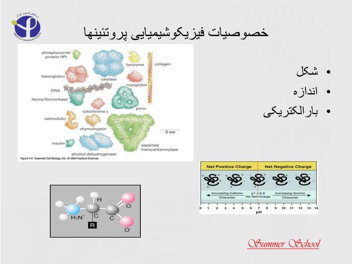 خصوصیات فیزیکوشیمیایی پروتئینها