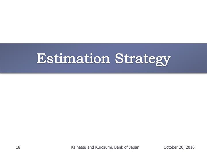 Estimation Strategy