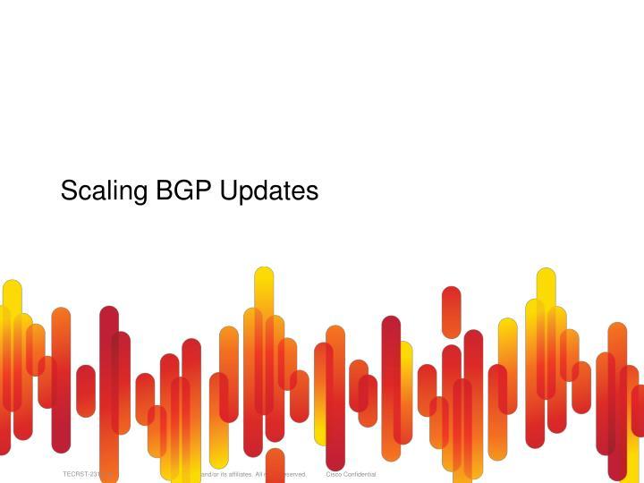 Scaling BGP Updates