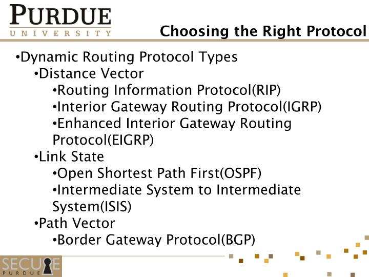 Dynamic Routing Protocol Types