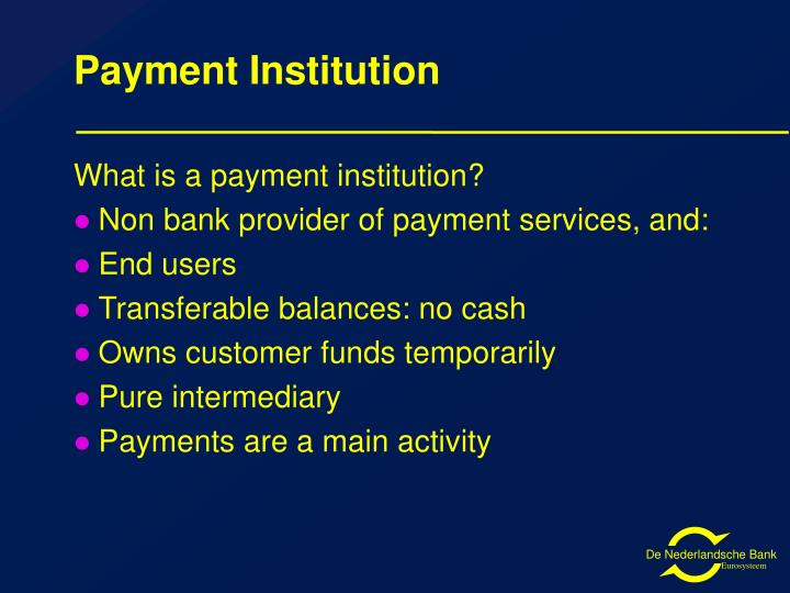 Payment Institution