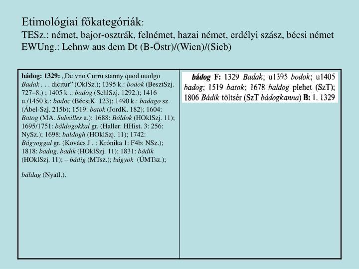 Etimológiai főkategóriák