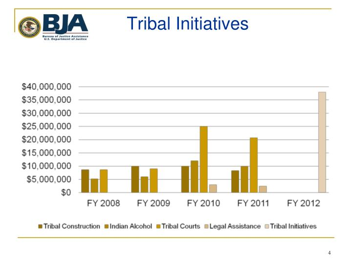 Tribal Initiatives