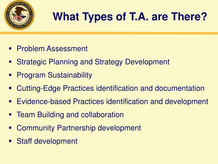 What Types of T.A. are There?