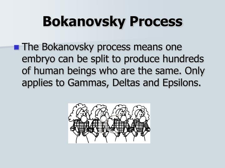 Bokanovsky Process