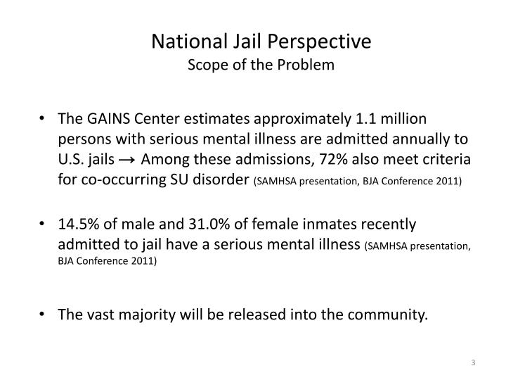 National Jail Perspective