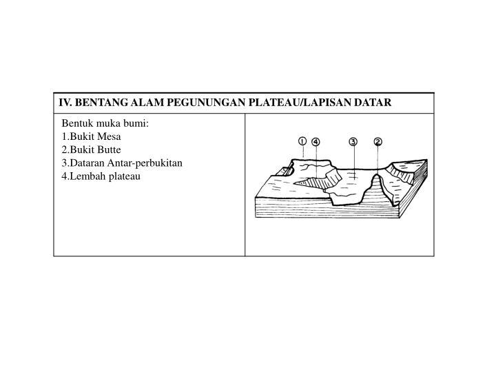 IV. BENTANG ALAM PEGUNUNGAN PLATEAU/LAPISAN DATAR