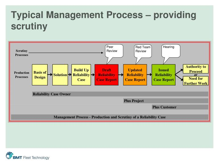 Typical Management Process – providing scrutiny