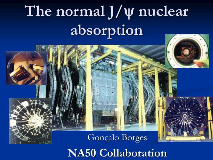 The normal j y nuclear absorption
