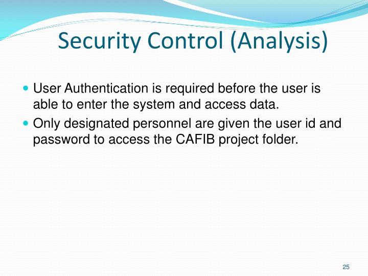 Security Control (Analysis)
