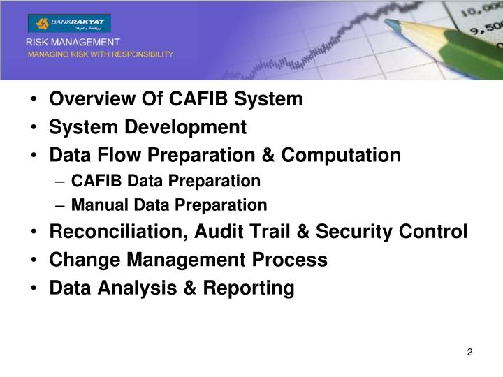 Overview Of CAFIB System