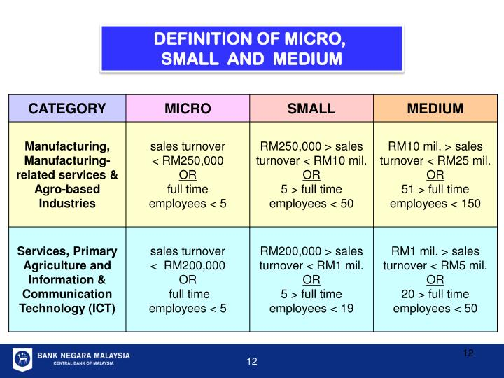 DEFINITION OF MICRO,