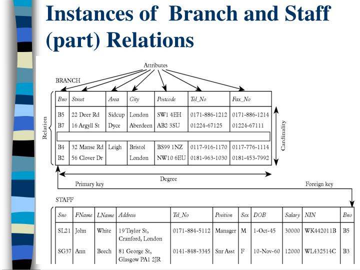 Instances of  Branch and Staff (part) Relations