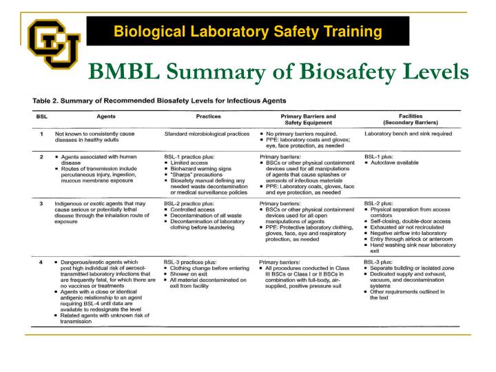 BMBL Summary of Biosafety Levels