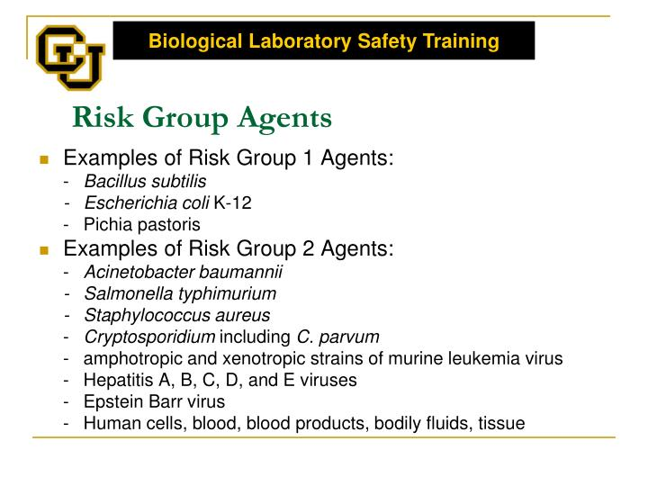 Risk Group Agents
