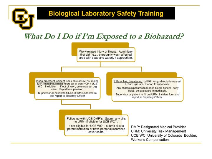 What Do I Do if I'm Exposed to a Biohazard?