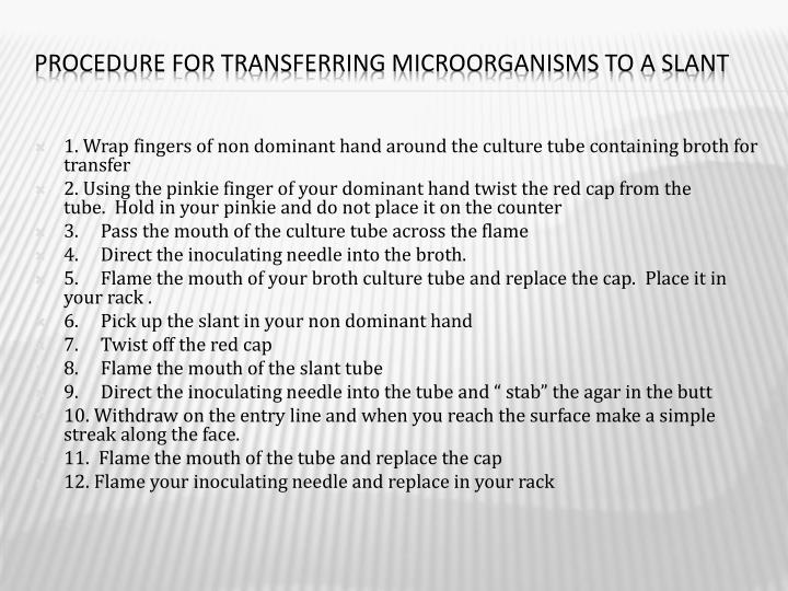 Procedure for Transferring Microorganisms to a Slant
