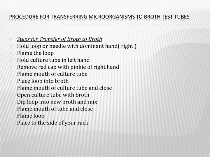Procedure for Transferring Microorganisms to Broth Test Tubes