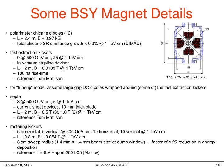 Some BSY Magnet Details