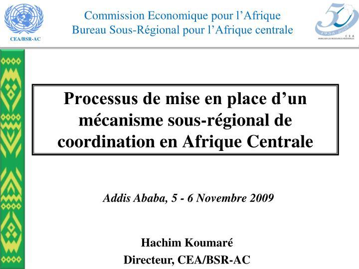 Processus de mise en place d'un mécanisme sous-régional de coordination en Afrique Centrale