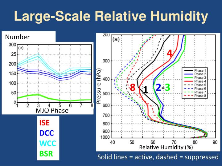 Large-Scale Relative Humidity