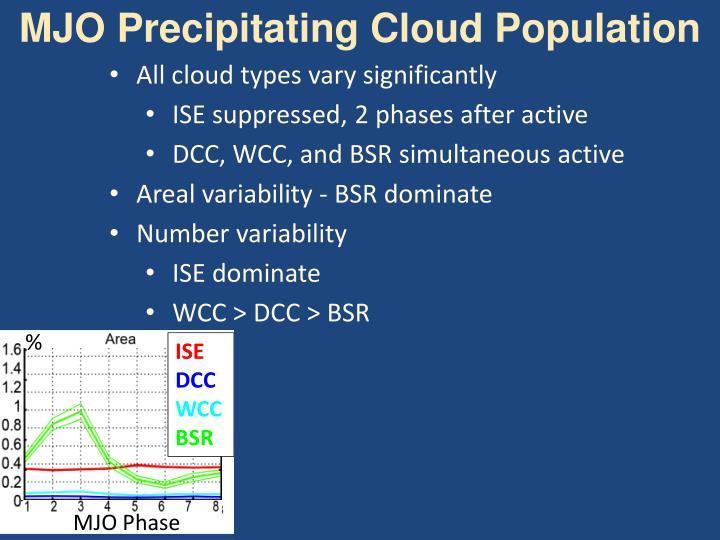 MJO Precipitating Cloud Population