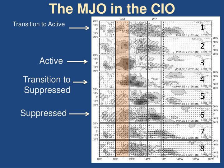The MJO in the CIO