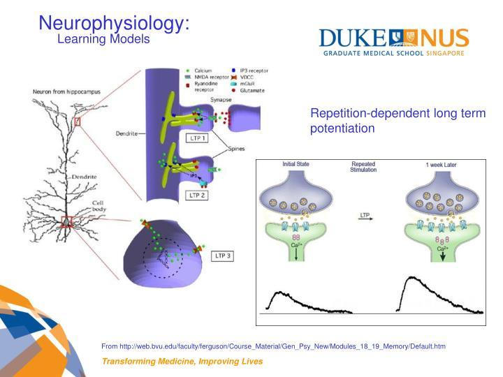 Neurophysiology: