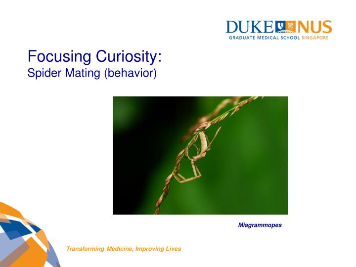 Focusing Curiosity: