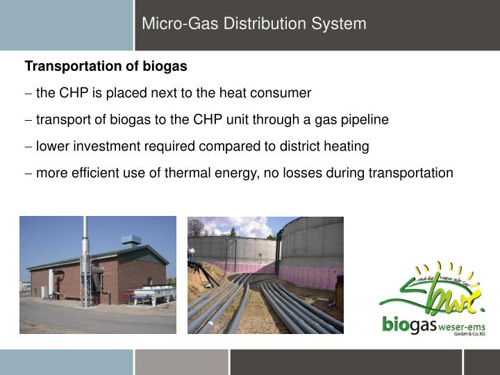 Micro-Gas Distribution System