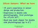 silicon sensors what we have