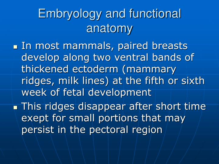 Embryology and functional anatomy