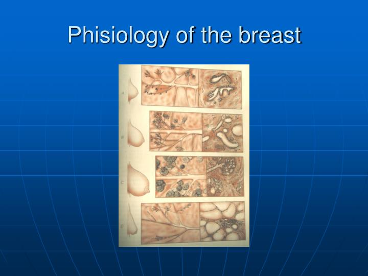 Phisiology of the breast