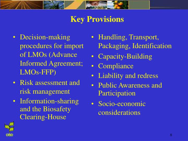 Decision-making procedures for import of LMOs (Advance Informed Agreement; LMOs-FFP)