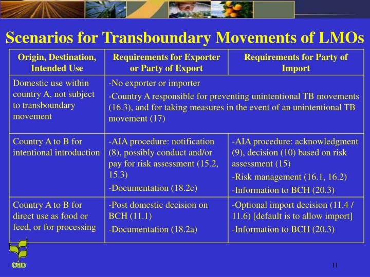 Scenarios for Transboundary Movements of LMOs