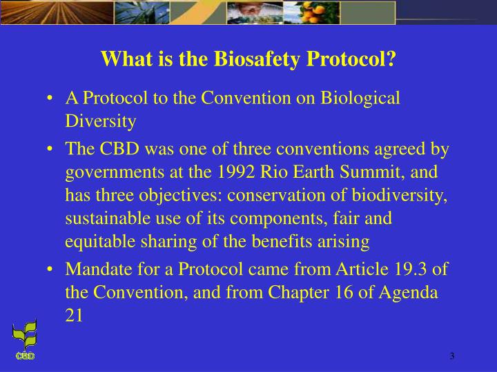 What is the Biosafety Protocol?