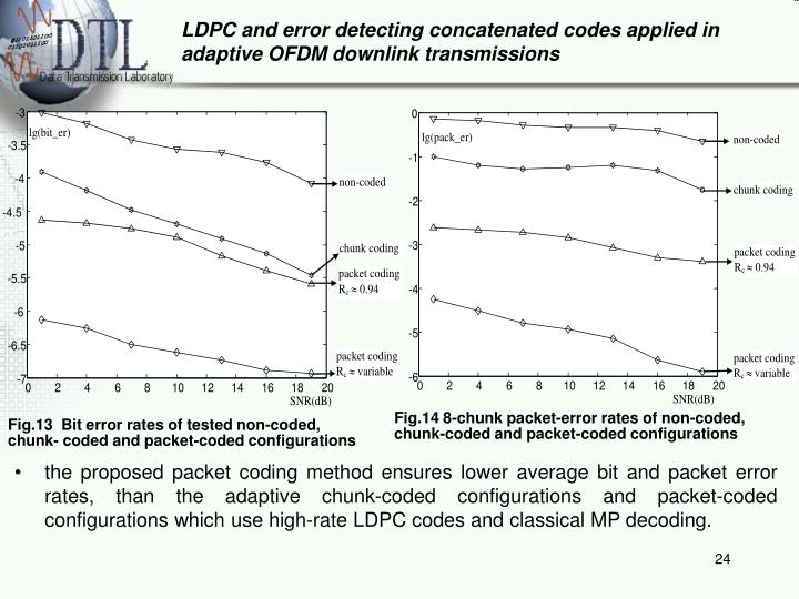 LDPC and error detecting concatenated codes applied in adaptive OFDM downlink transmissions