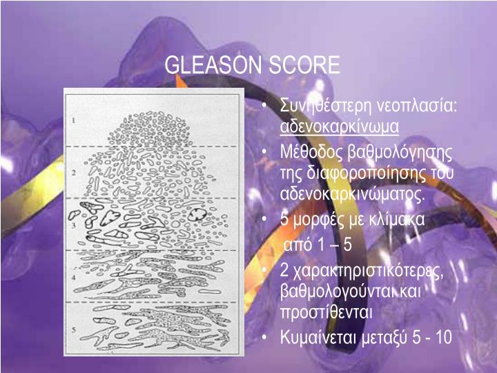 GLEASON SCORE